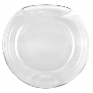 Large Glass Display Bowl