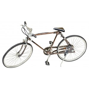 Model Bicycle