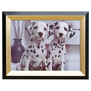 Dalmations Hologram Framed Picture