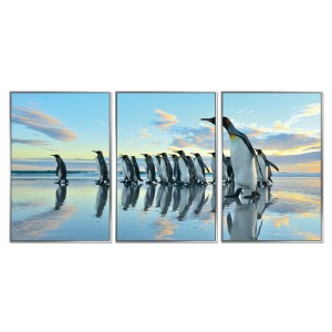 Framed Acrylic Pictures - Penguin March (Set of 3)