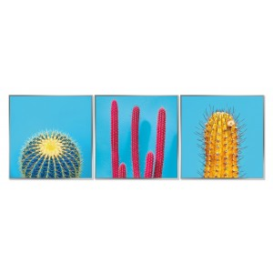 Framed Acrylic Pictures - Cactus (Set of 3)