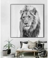 Lion glass art picture on display