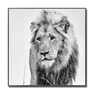 Lion Glass Art Picture