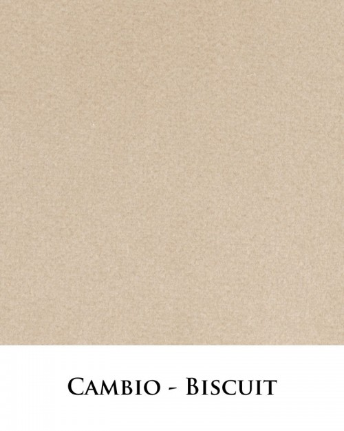 Cambio - Biscuit