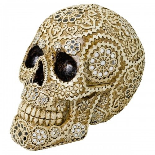 Decorative Model Skull