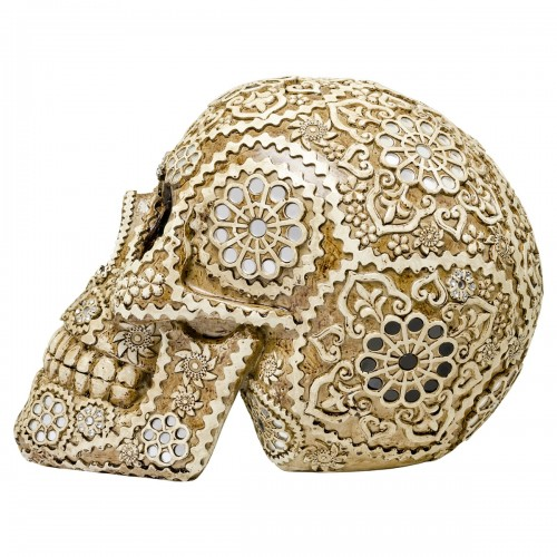 Decorative Model Skull - Side View