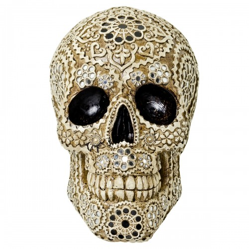 Decorative Model Skull - Face On