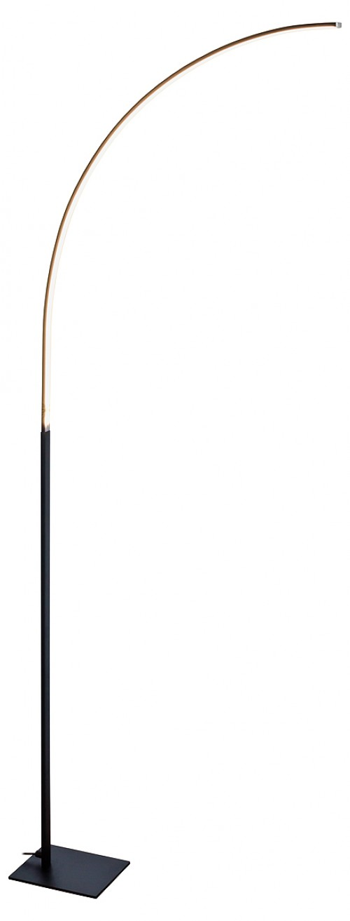 L.E.D Curved Black Floor Lamp