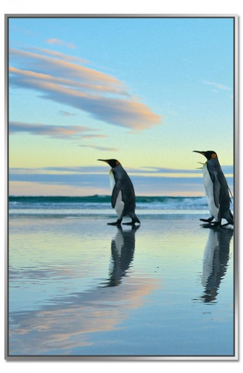 Framed Acrylic Pictures - Penguin March (Set of 3) - Left Picture