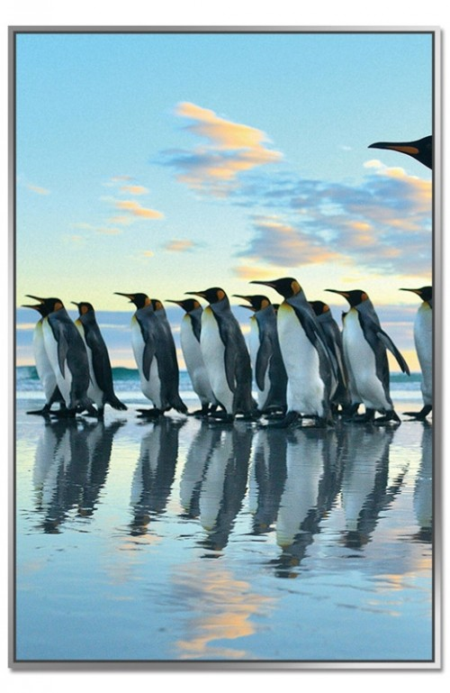 Framed Acrylic Pictures - Penguin March (Set of 3) - Middle Picture