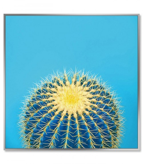 Framed Acrylic Pictures - Cactus (Set of 3) - Left Picture