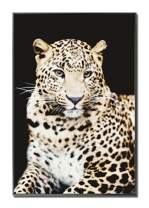 Cheetah Glass Art Picture