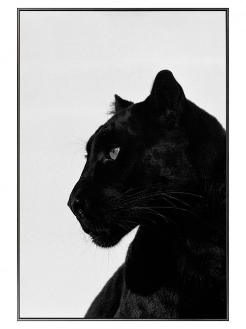 Black Panther Glass Art Picture